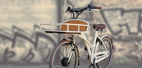 Electrische fietsen